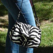 zebra_ walking